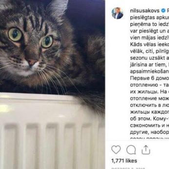 Garsiausi katinai politikoje nuo miestelio mero JAV iki Rygos savivaldybės keturkojų patarėjų