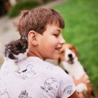 Patys juokingiausi ir kvailiausi teiginiai apie gyvūnus, kuriuos esate girdėję!