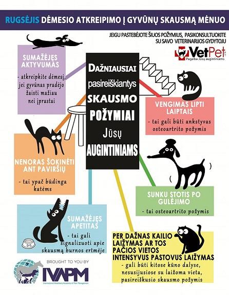 Rugsėjis - dėmesio atkreipimo į gyvūnų skausmą mėnuo