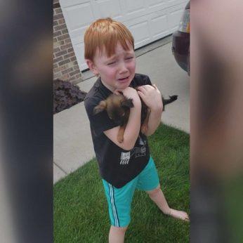 Seneliai įteikė svajonių dovaną – berniuko nuoširdi reakcija sujaudins iki širdies gelmių