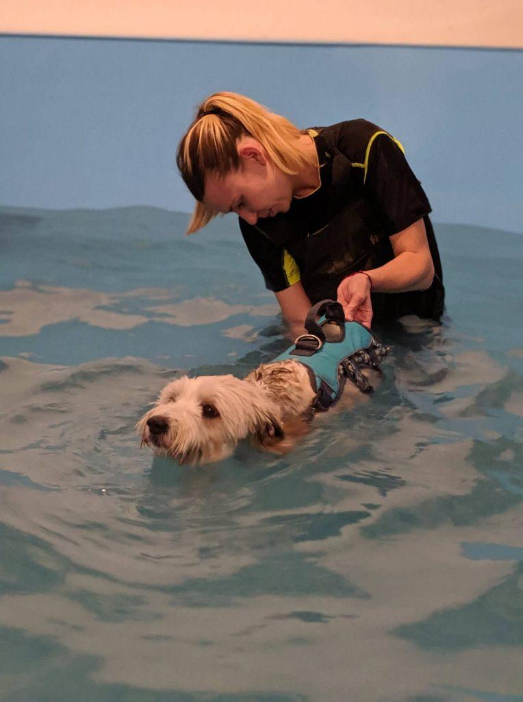 Hidroterapijos centras šunims atsirado iš noro padėti ir sau, ir kitiems