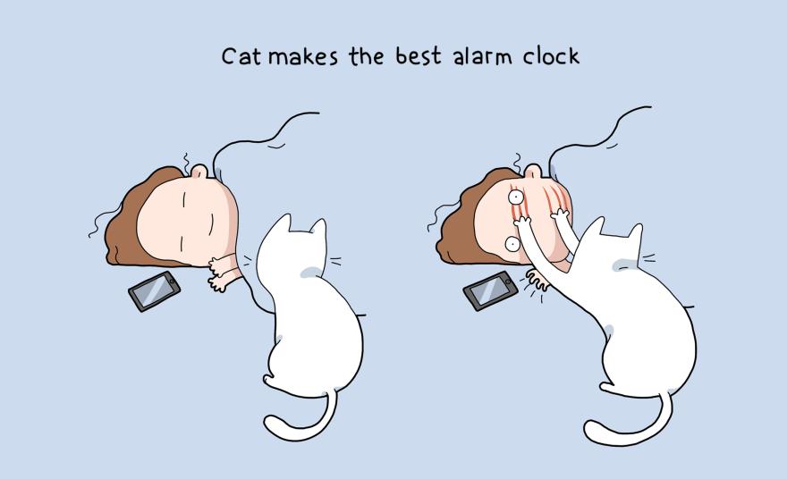 Ir galiausiai katė yra geriausias žadintuvas!