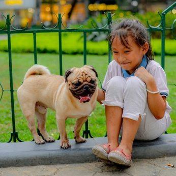 Ką daryti, kad šuo pamiltų vaikus?