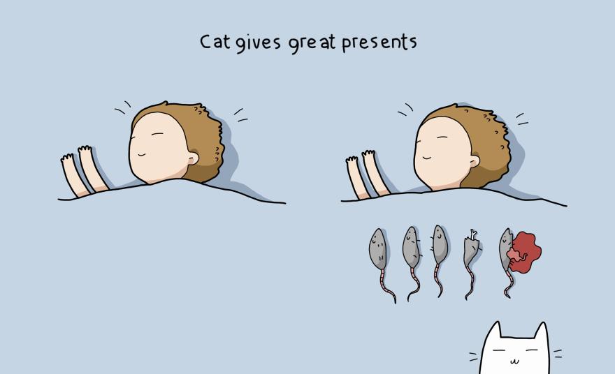Katė dovanoja šaunias dovanas