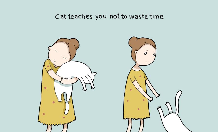 4. Katė išmoko nešvaistyti laiko.