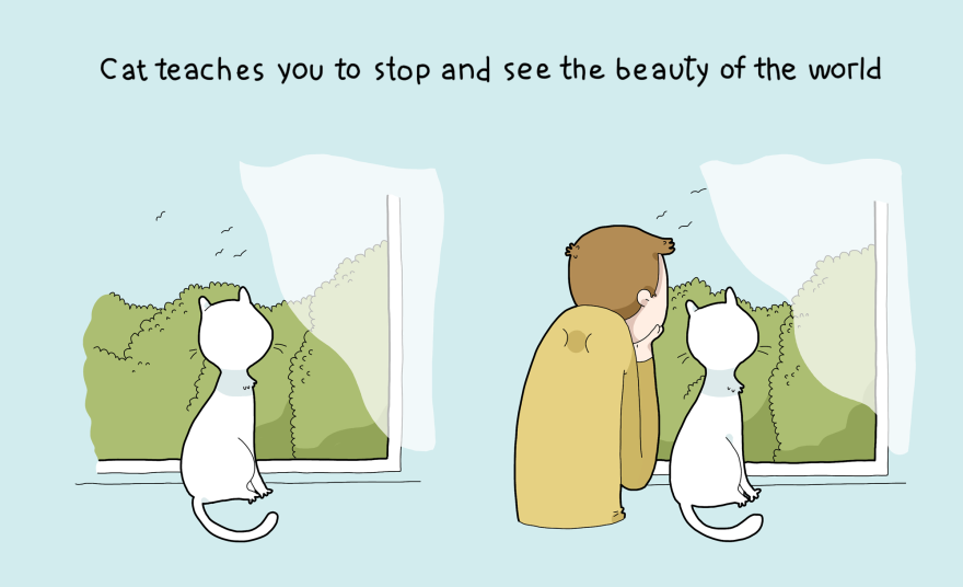 Katė išmoko pastebėti pasaulio grožį