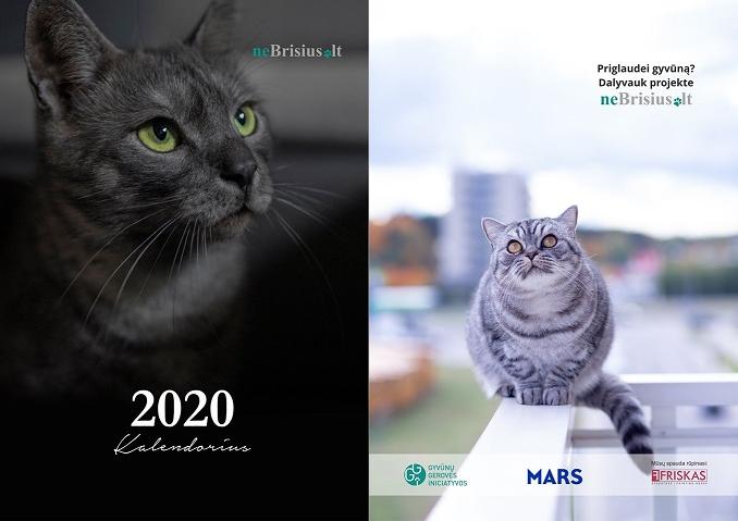 2020 metų neBrisiaus.lt kalendorius