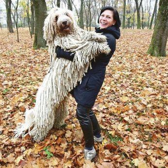 Kai kaunietė išveda savo šunį, sustoja ne tik praeiviai, bet ir automobiliai