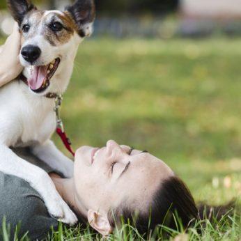 Nutarėte įsigyti gyvūną iš veislyno pasidomėkite koks turi būti veisėjas