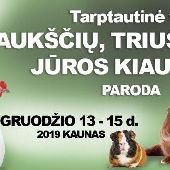 Tarptautinė veislinių gyvūnų paroda 2019.