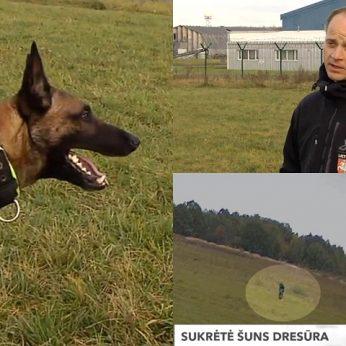 Vilnietė užfiksavo šokiruojančius šuns dresuotojo veiksmus