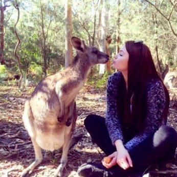 Gražuolės lietuvės rankos Australijoje gydo ir gaisro siaubą patyrusių koalų skausmą