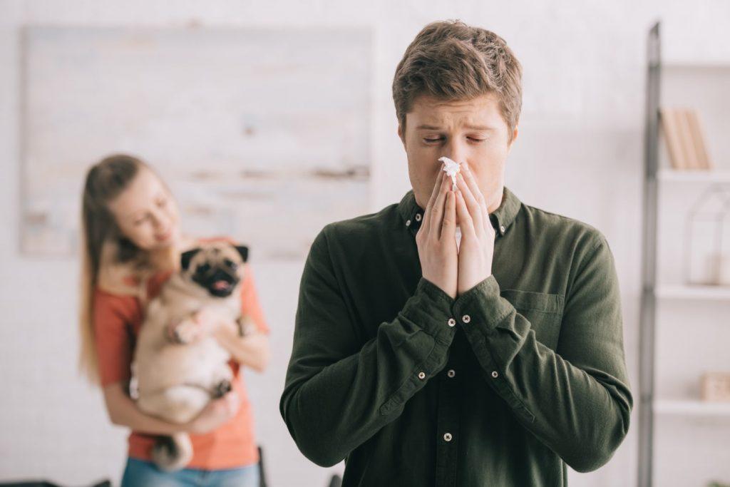 Deja, jei įmanoma, alergologai siūlo augintinio atsisakyti, kadangi negydoma alergija gali išsivystyti į bronchinę astmą. Tačiau daugelis su tokia mintimi niekuomet nesutiks. 123rf nuotr.