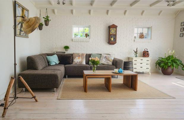 Kaip apsaugoti baldus nuo kačių Jūsų namuose