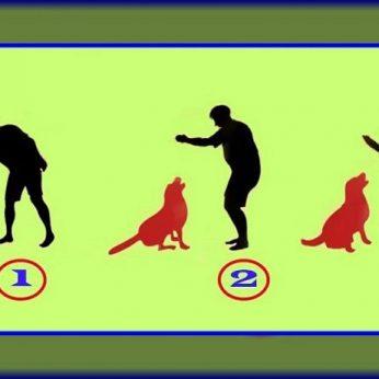 Kuriame paveikslėlyje – tikrasis šuns šeimininkas Štai ką tai sako apie jus