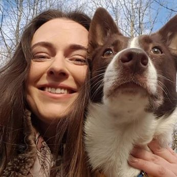 Šuns mokymas kodėl tai svarbu ir kokių taisyklių laikytis