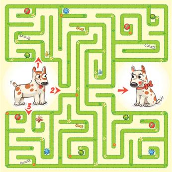 Padėkite šuniukui rasti kelią: kaip daiktus ar kelią randa šie keturkojai