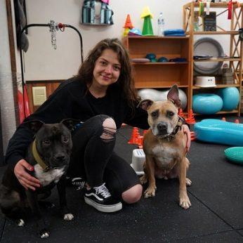Šunys iš prieglaudos pakeitė Dominykos gyvenimą: parodė gyvenimo kelią