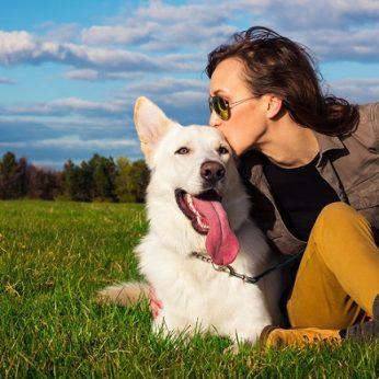 Šunys su žmonėmis bendrauja ne tik lodami ką jie mums sako