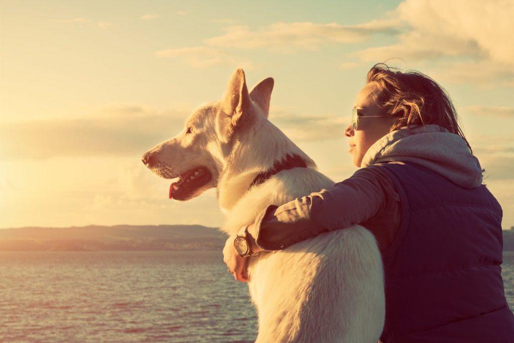 Apkabinti šunį verta, sako mokslininkai. 123rf nuotr.