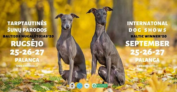 Tarptautinės šunų parodos Palangoje