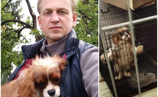 Pirkėjos apžavėtas Rokiškio r. meras pardavė šunelį į veisyklą Kretingos r. kainos neatskleidžia