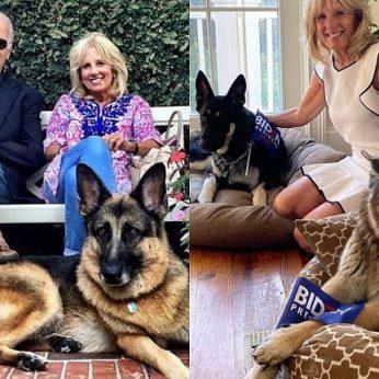 Į Baltuosius rūmus sugrįžta gyvūnai: Joe Bideną kabinete lydės du keturkojai