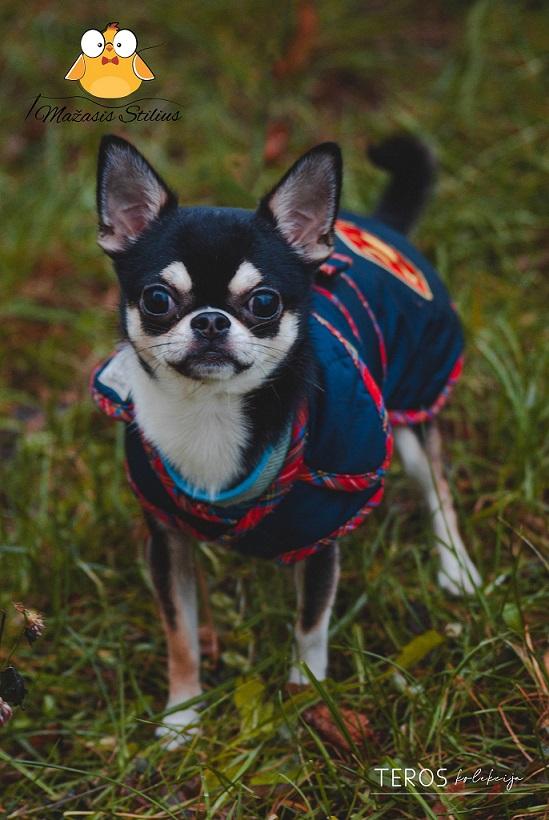 Rankų darbo vienetinės šiltos ir madingos striukės šuniukams