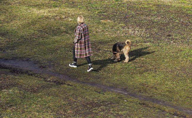 Šeimos pasivaikščiojimas su šuniu Kėdainių rajone baigėsi nelaime