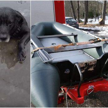 Po tragedijos, kai gelbėdamas šunį nuskendo žmogus, dalijasi patarimais, kurie gali išgelbėti ne vieną gyvybę