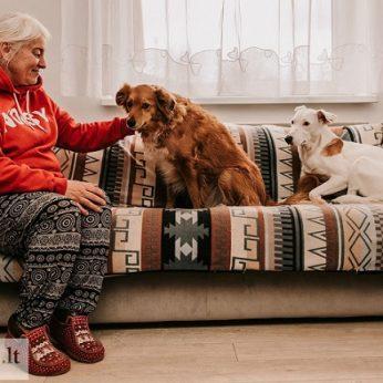 Iš siaubingų sąlygų išgelbėti šunys bando prisitaikyti prie normalaus gyvenimo ir priimti meilę