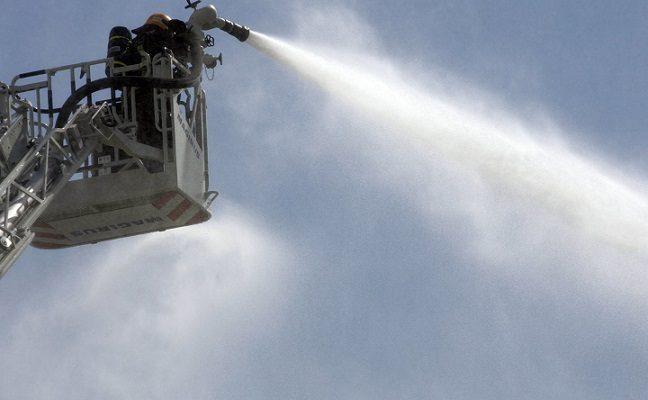 Trečiadienį ugniagesiai Ariogaloje skubėjo gelbėti į medį įlipusio ir išlipti negalinčio katino