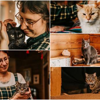 Šeima savo namuose priglaudė 10 kačių kritikuojantiems, kad tai patologija – atkirtis