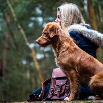 Šuo gali užsikrėsti nuo žmogaus ir stresu, ir depresija