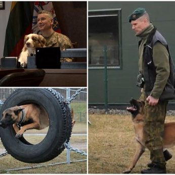Lietuvos kariuomenės vadas papasakojo apie keturkojus karius: atskleidė, kokią šunybę jam iškrėtė augintinis