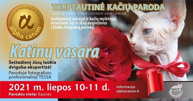 """Alpha Catum kviečia į Tarptautinę kačių paroda """"KATINŲ VASARA""""! Susitikime pamurkti!"""
