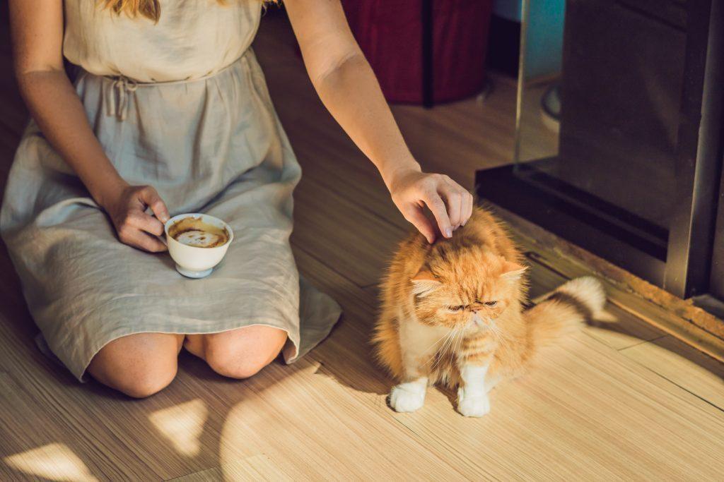 Kaip žinoti, ar mano katei netrūksta vitaminų?