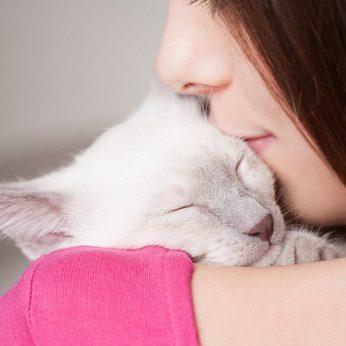 Įspėja dėl kačiukams ir žmonėms pavojingų parazitų: štai kada derėtų sunerimti