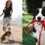 Šuns vedžiojimas kokių pasivaikščiojimo tipų gali būti ir ką daryti, kad šuo neištrauktų rankų